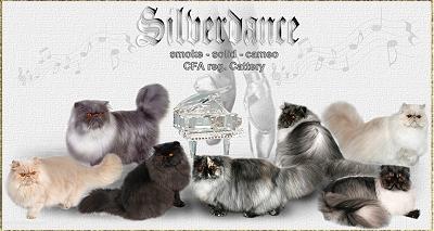 An den Beitrag angehängtes Bild: http://www.silverdance.de/images/Silverdance_all.jpg